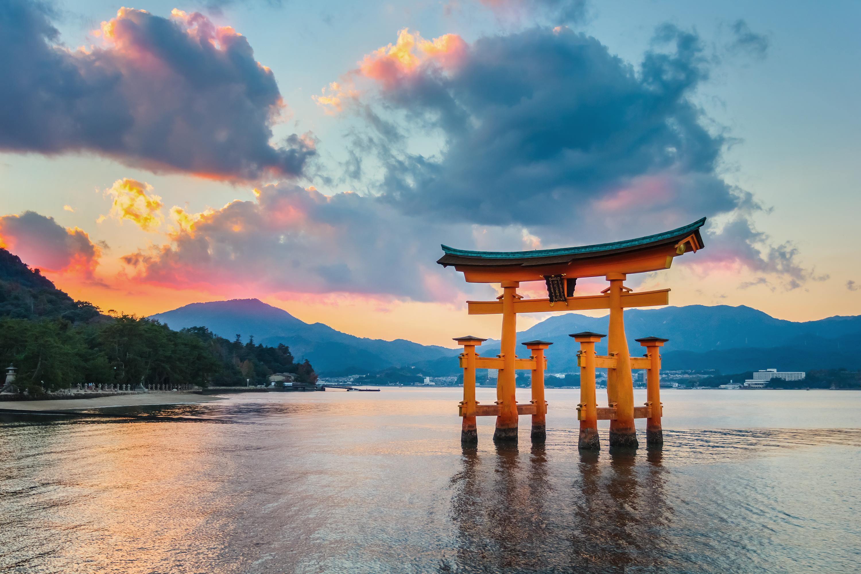 Японские витамины – отличное решение для здоровья, молодости и красоты   Статьи KWC-Japan